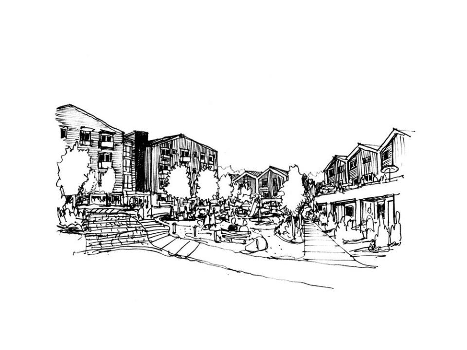 Hollyburn Burr – sketch